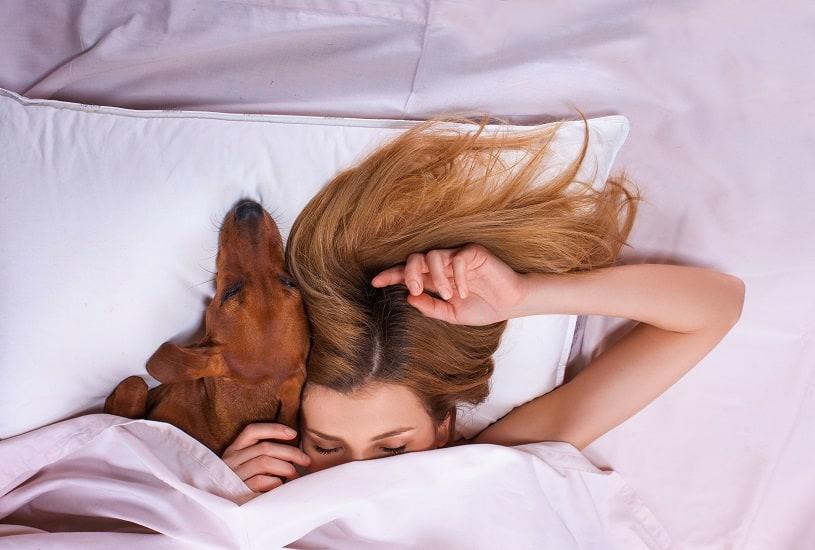 Benefícios de dormir com cachorro