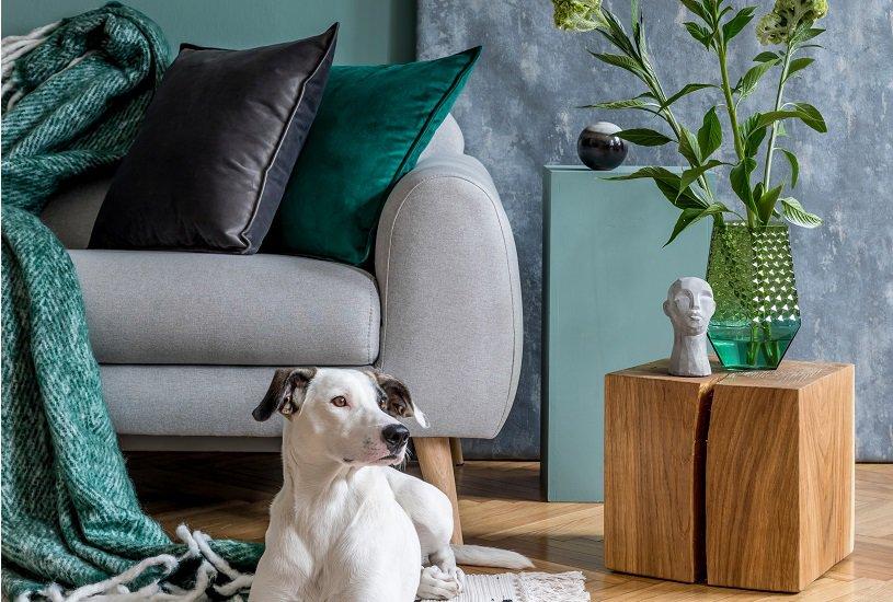 Almofadas para sofá